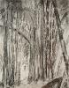 Bambous de GENEVIEVE GOSSOT4_11