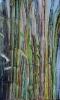 Bambous de GENEVIEVE GOSSOT_25