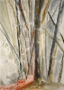 Bambous de GENEVIEVE GOSSOT_7
